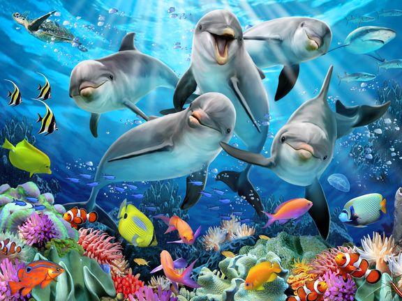 #Дельфиний восторг (Dolphin delight)