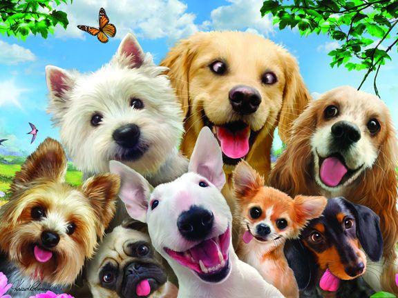 #Собаки селфи  (Dogs Selfies)