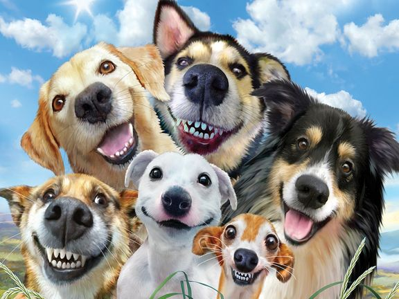 #Улыбочку (Dog Smile Selfie)